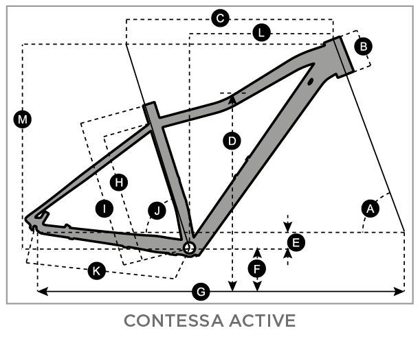 scott contessa active geometrias 1